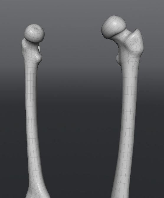 Skull190.JPG