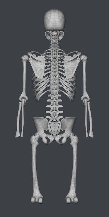 Skull193.JPG