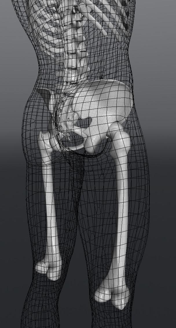 Skull201.JPG