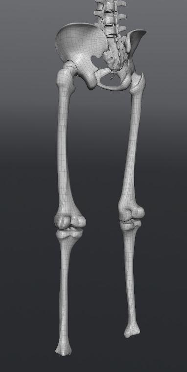 Skull203.JPG