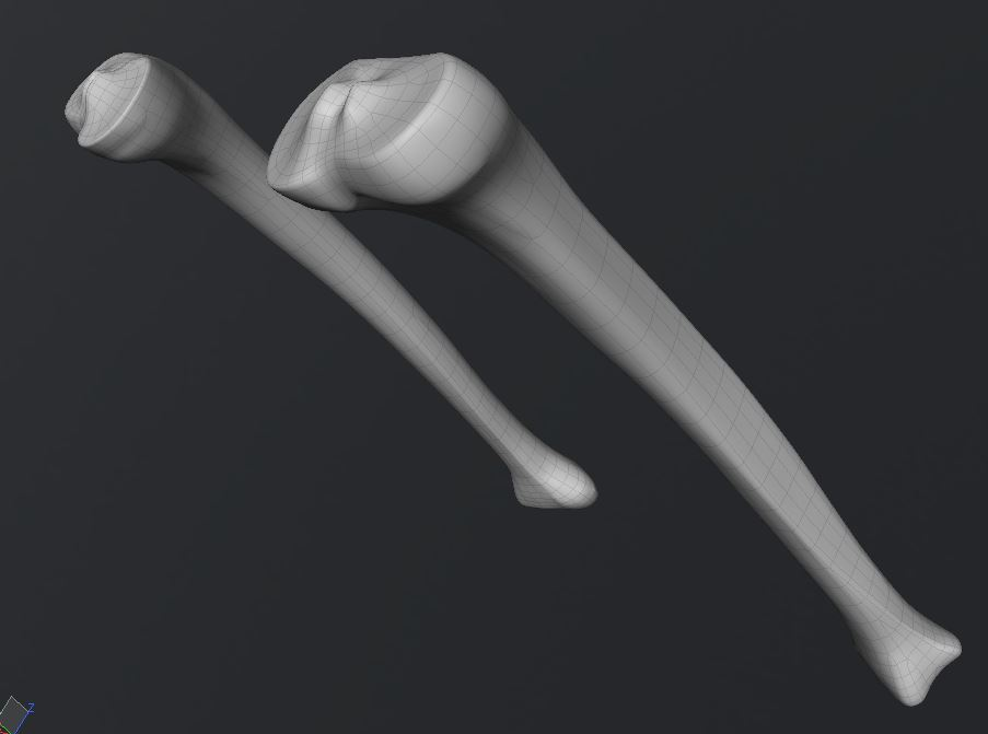 Skull205.JPG