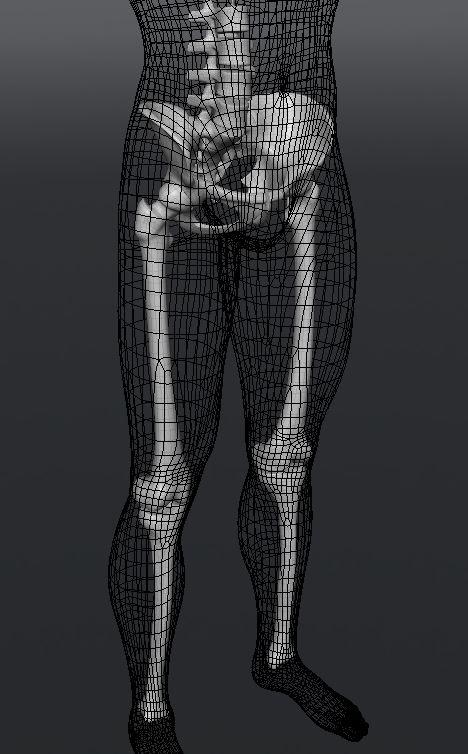 Skull208.JPG