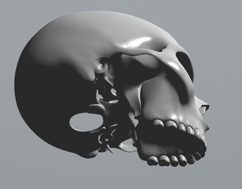 Skull21.JPG