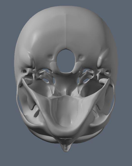 Skull26.JPG