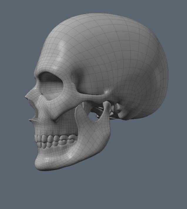 Skull29.JPG