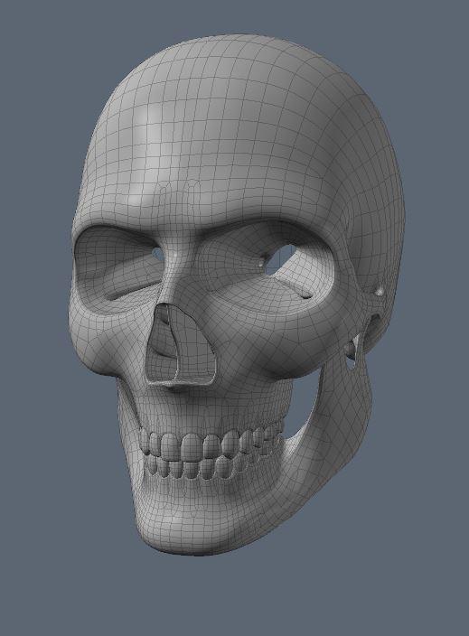 Skull31.JPG