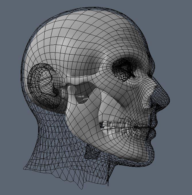 Skull37.JPG