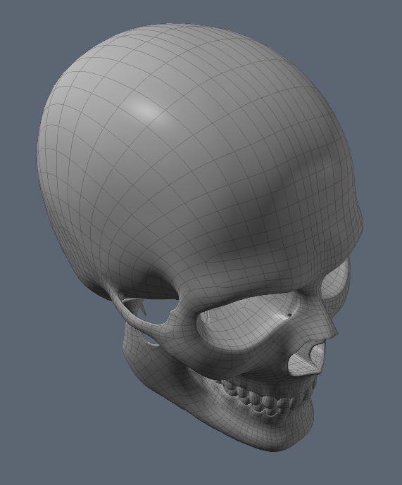 Skull40.JPG