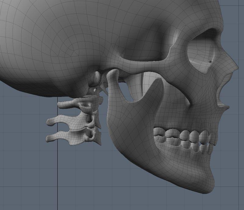 Skull53.JPG