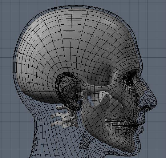Skull57.JPG
