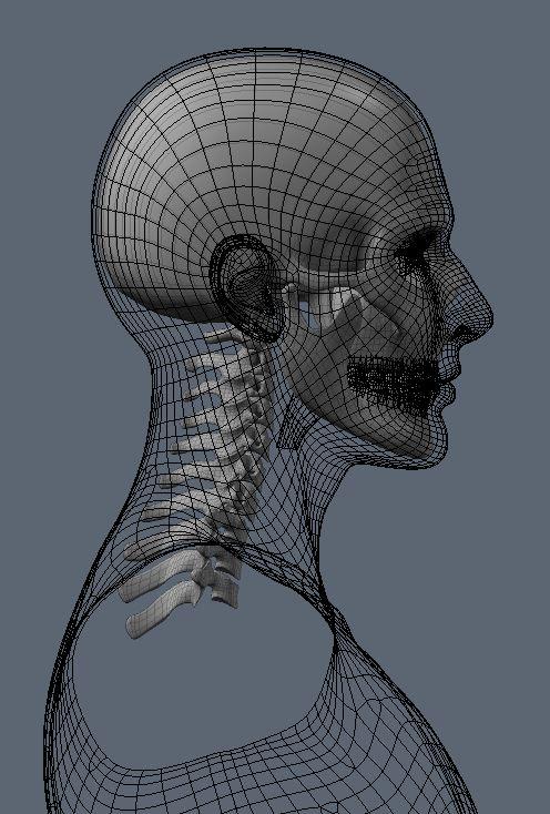 Skull70.JPG