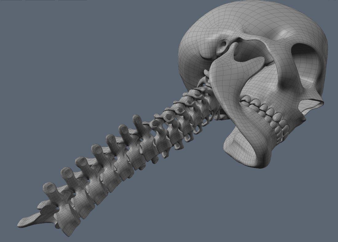 Skull72.JPG