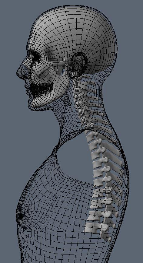 Skull74.JPG
