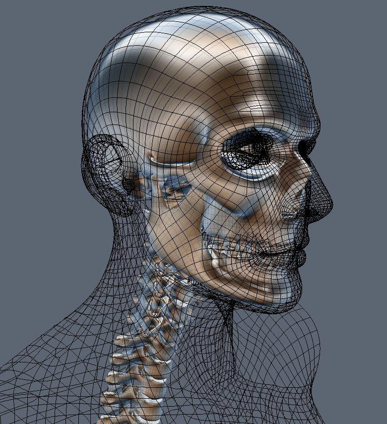 Skull85.JPG