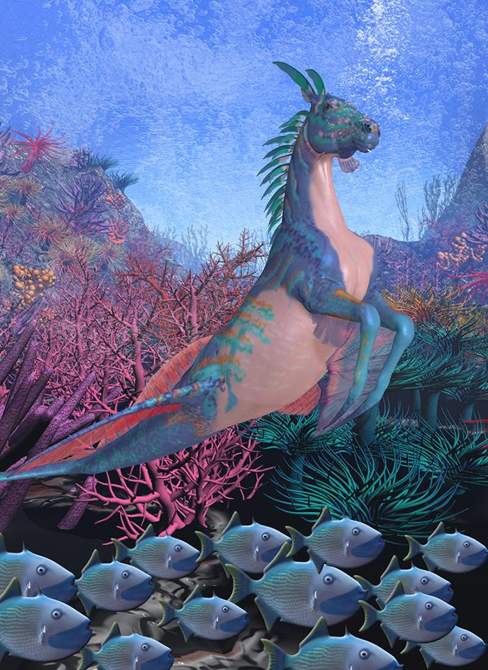 smaller_seahorse.jpg