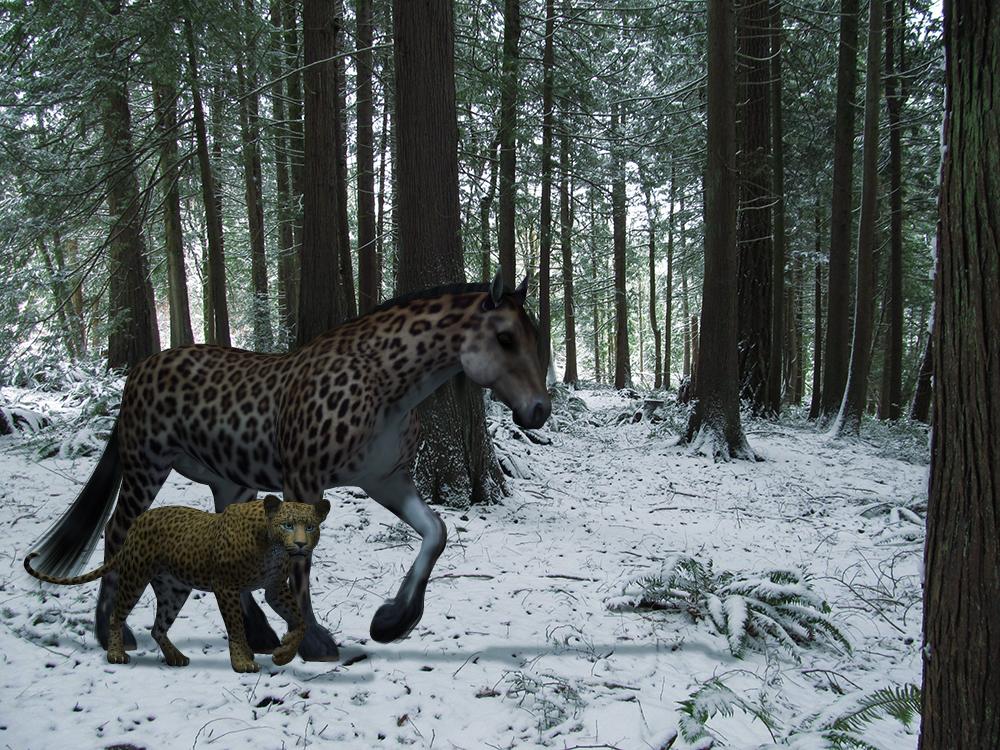 snowy_horse.jpg