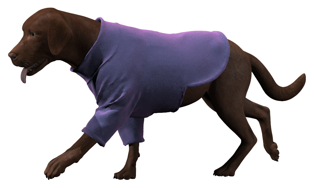 Sweater (poser).png
