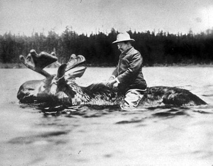 teddy-roosevelt-riding-moose_1529324612146.jpg
