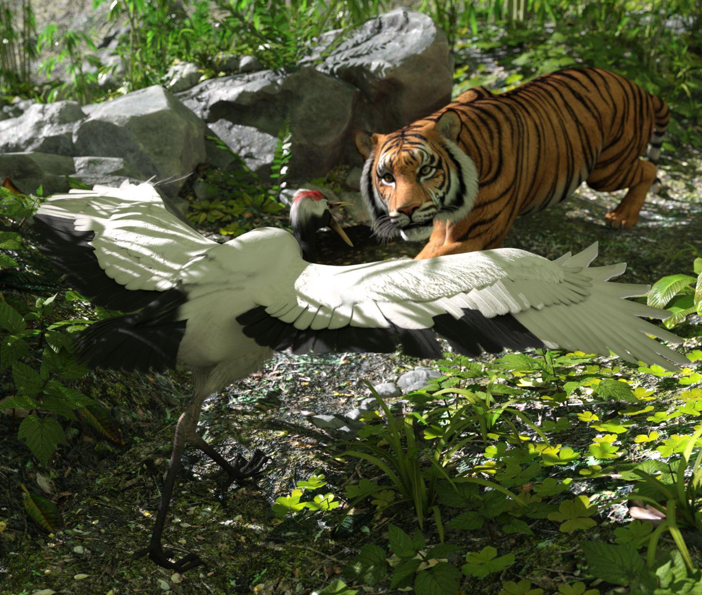 the tiger crane.jpg