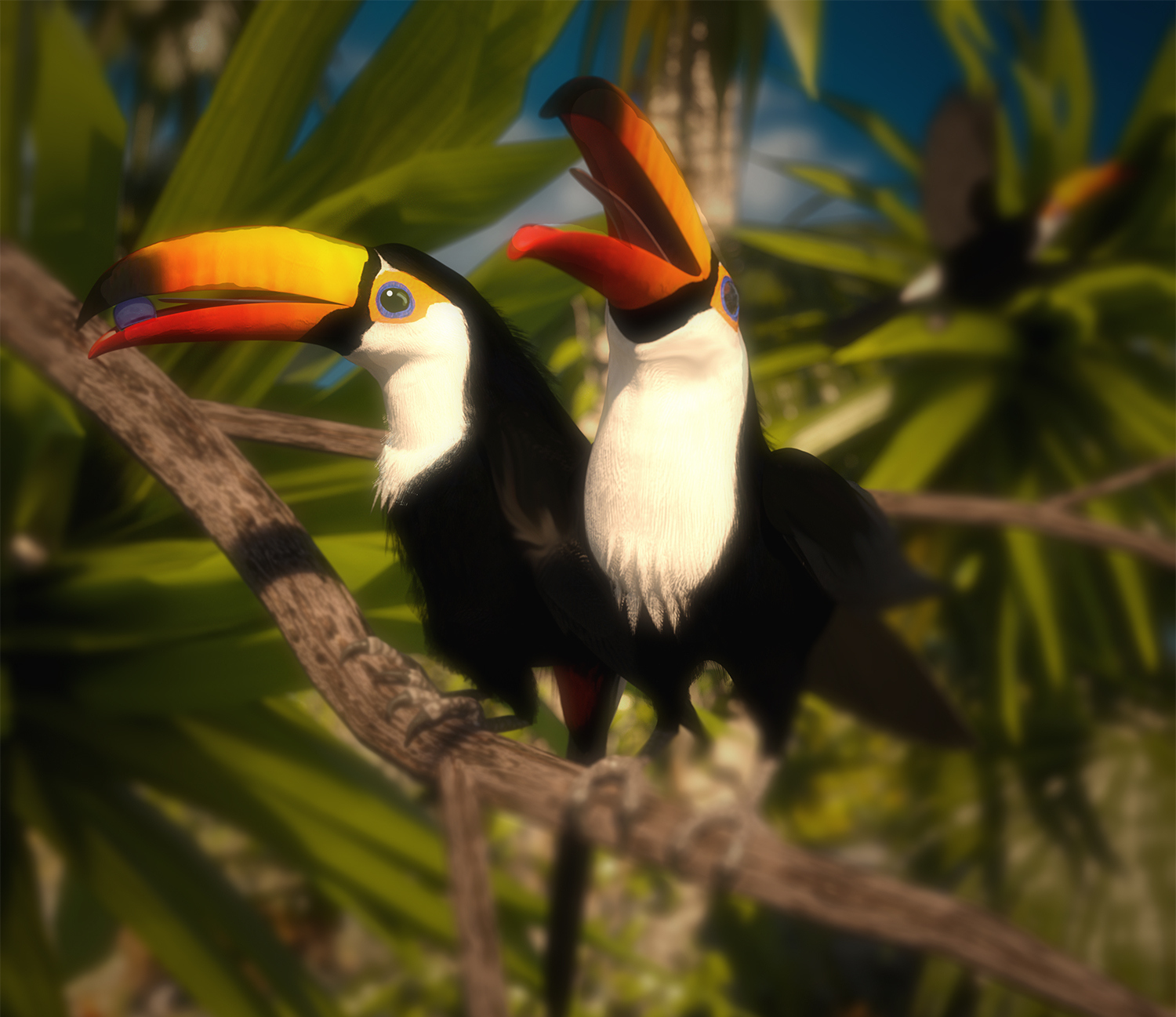 Third place Sunny Toucans by Trouble.jpg
