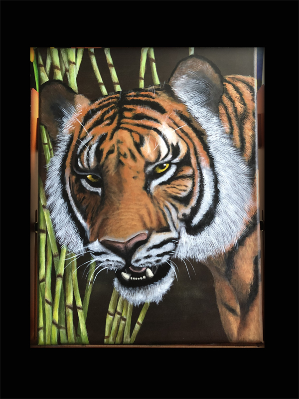 tiger eyes painting Z.jpg
