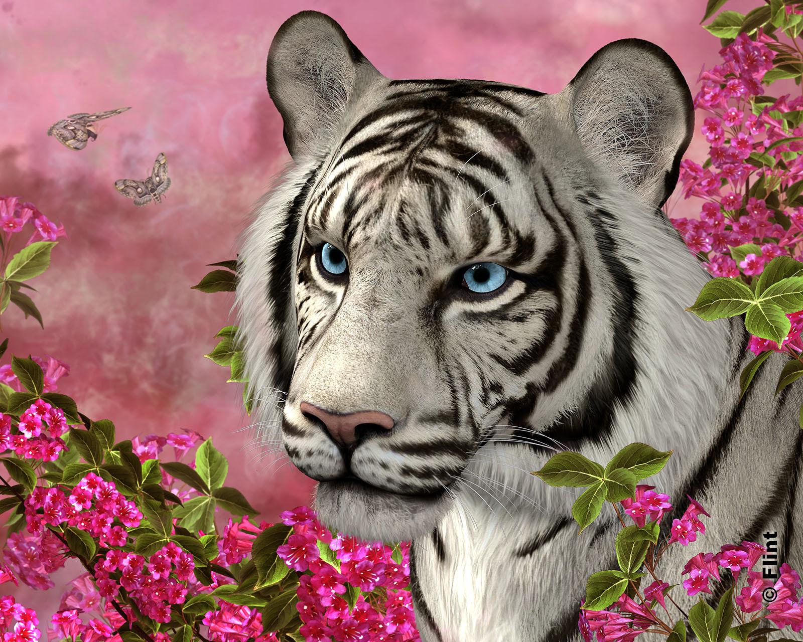 Tiger Garden.jpg