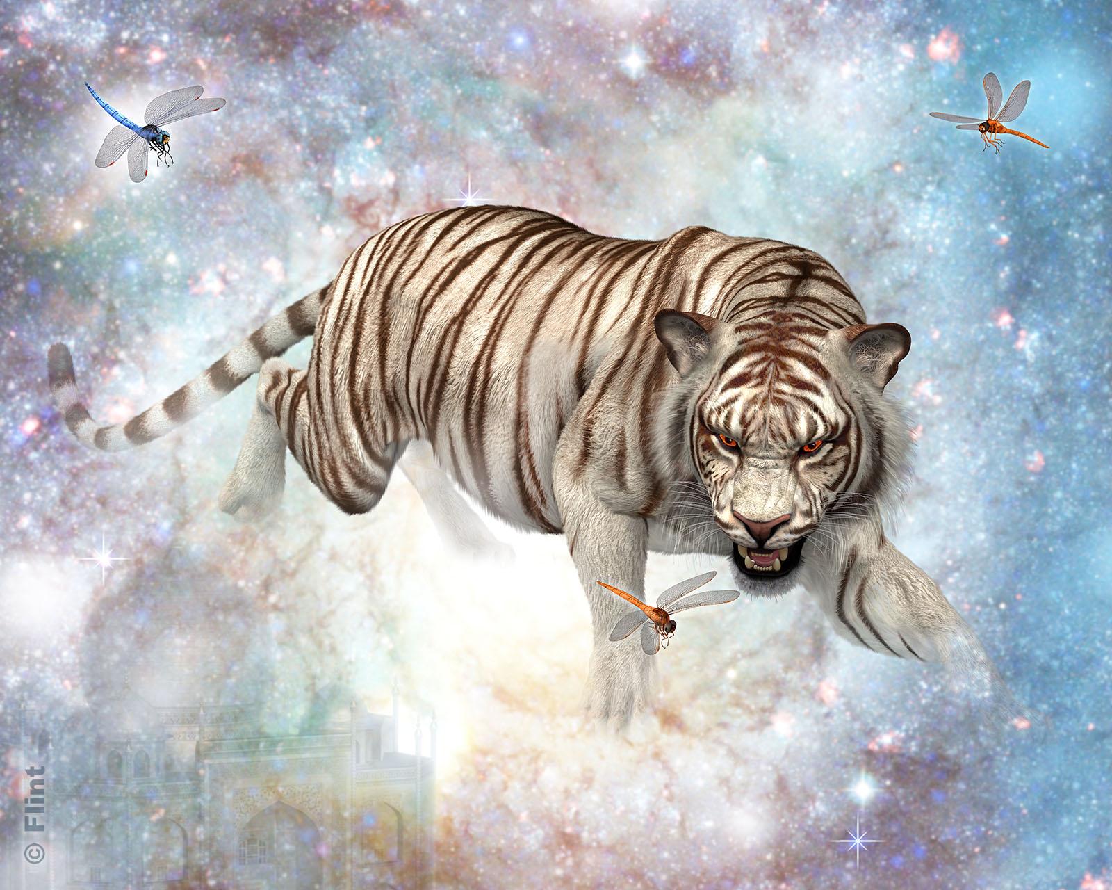 Tiger Nebula.jpg