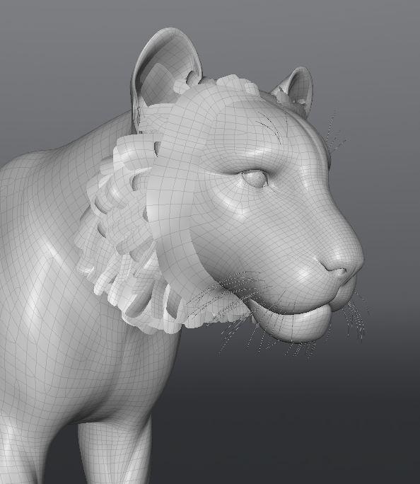 TigerWork10.JPG