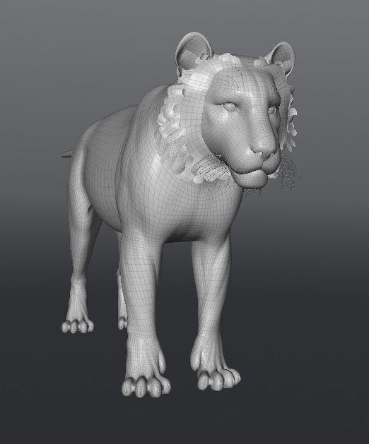 TigerWork9.JPG