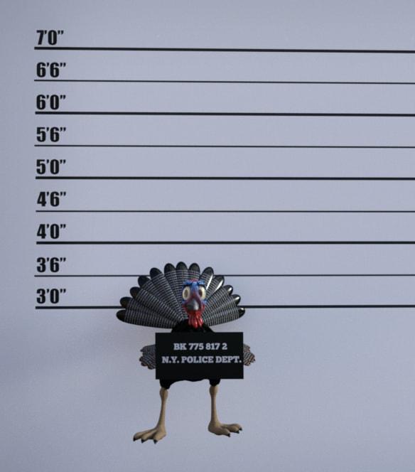 turkey-police-mug-shot.jpg