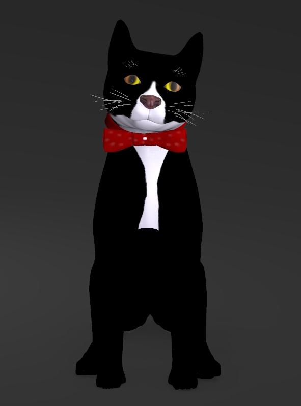 TUXEDO CAT with BOW TIE.jpg