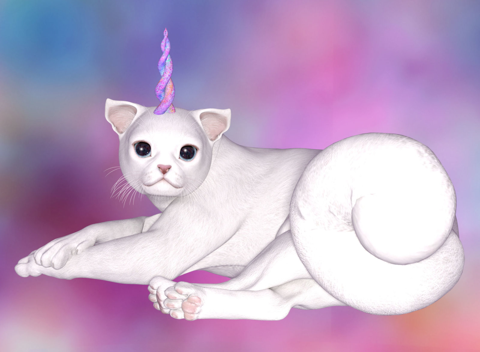 Unicorn Kitty copy.jpg