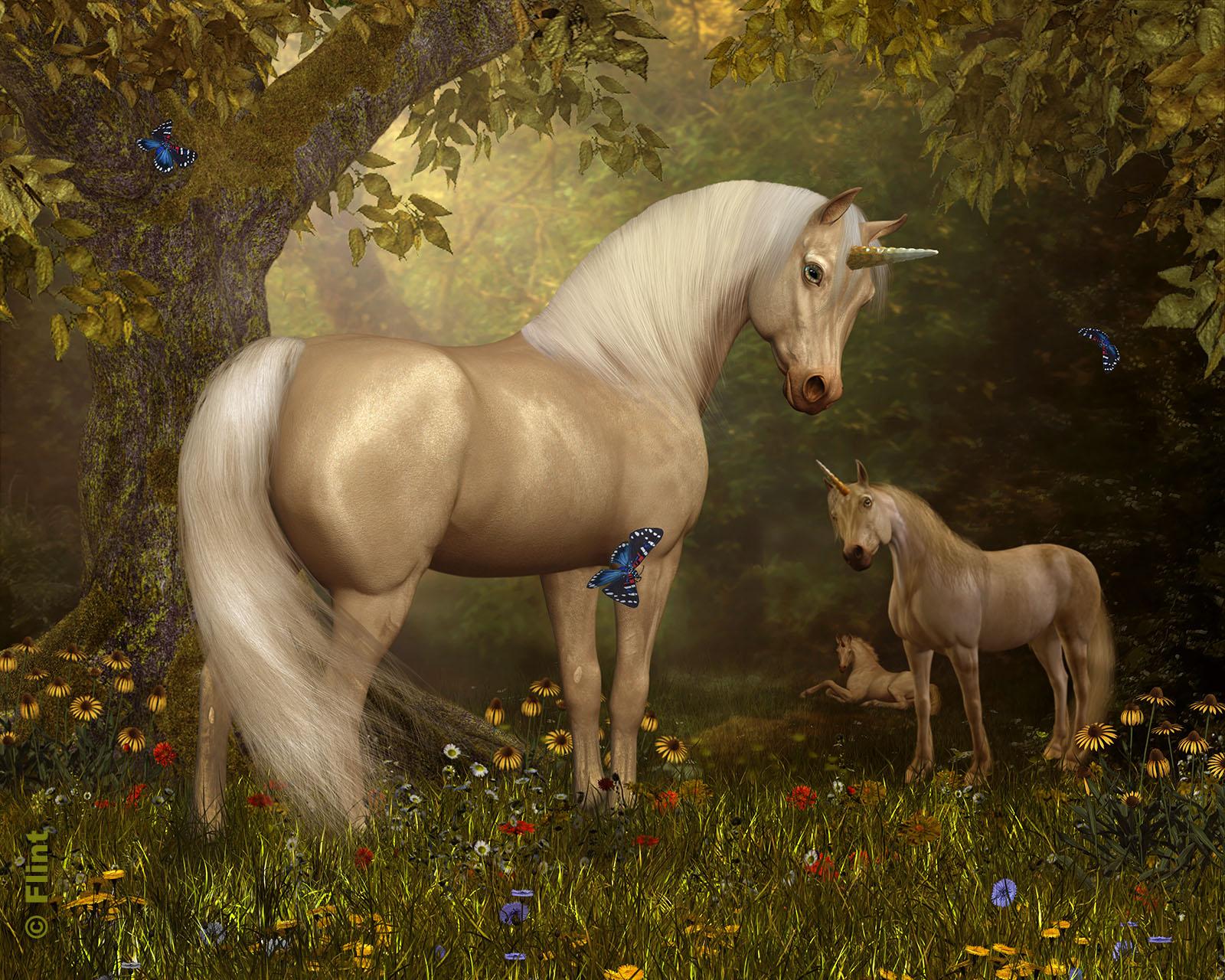 Unicorn Meadow.jpg