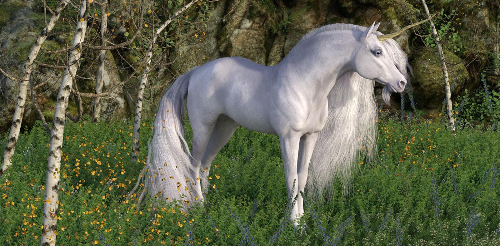 UnicornWoods.jpg