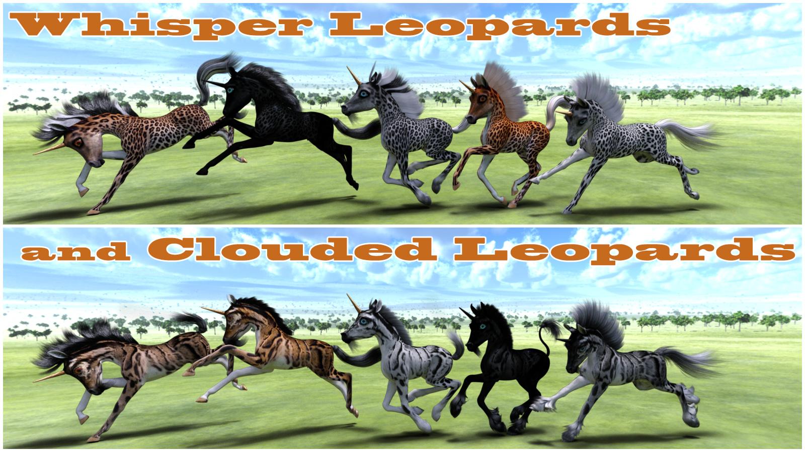 Whisper ponies 2.jpg