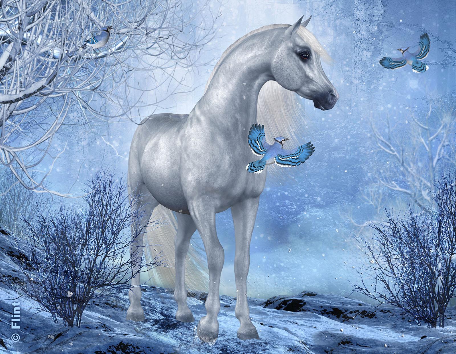 Winter Magic.jpg