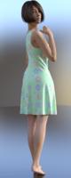 Summer Dress DS.png