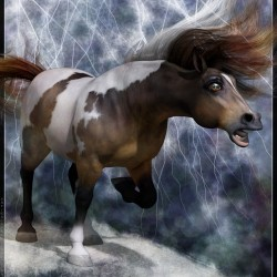 The Storm Mustang By Satira Capriccio