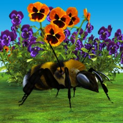 Bee & Pansies