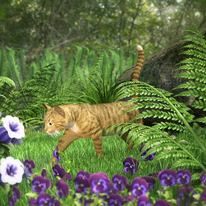 Every Cat Thinks He's A Tiger by Melanie L