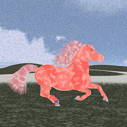 A Pink Pony for Rae to NOT Think About