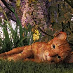 Ginger-cat-2