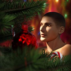 Honorable Mention - Christmas Magic by Luannemarie