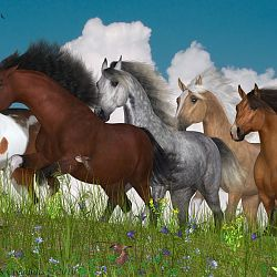 Horses Of The Heartland By Lyne