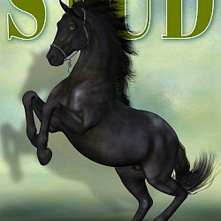 Magazine Cover - Stallion Directory - Dark Fae Edition