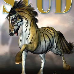Magazine Cover - Stallion Directory - Fantasy Edition