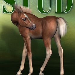 Magazine Cover - Stallion Directory - Future Edition