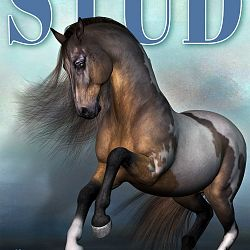 Magazine Cover - Stallion Directory - Mustang Edition