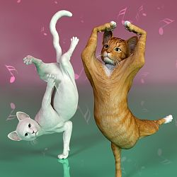 Cat Just Dance