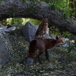 Owl And The Fox By My 3D Spin